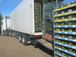 Andersons Transport delivering flower trolleys with a tail lift trailer.