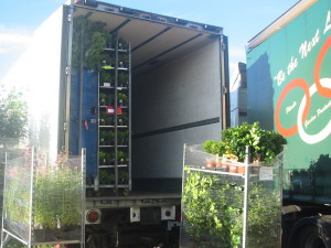 Andersons Transport Trailer Loading Flower trolleys